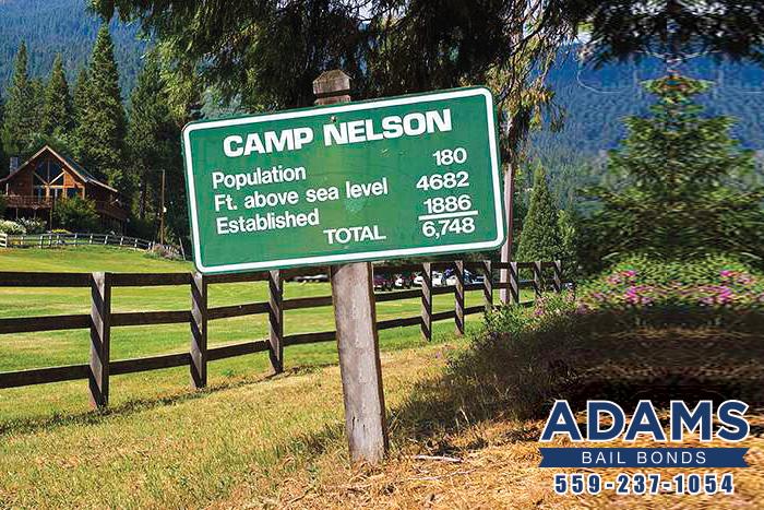 Camp Nelson Bail Bonds